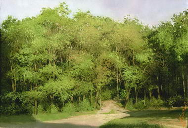 Sorin's Photorealistic Oil Paintings Gallery