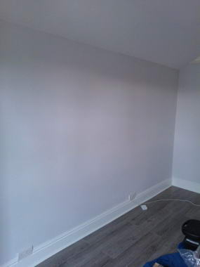 Professional Painters London